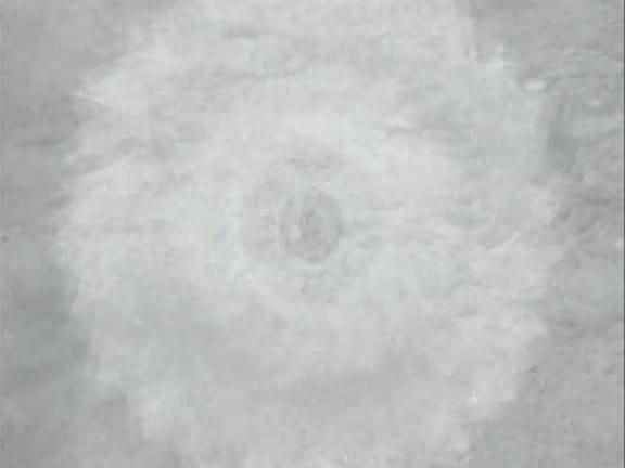 CM-glucode00111