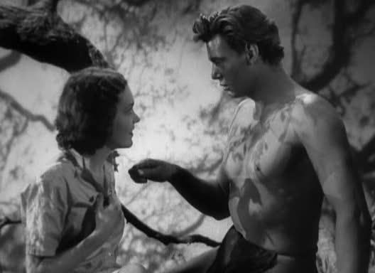 Tarzan The Ape Man Tarzan Ape Man 1932